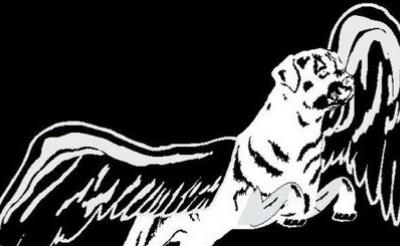 Black Dog – A Led Zeppelin Tribute